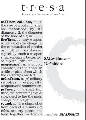 SALW_Basics_Definitions_TRAINEE_01.png