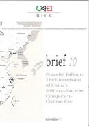 Brief_10_FRONT.jpg